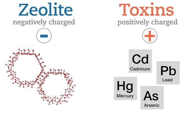 detoxing heavy metals