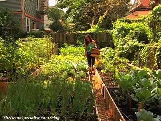 clone produce garden